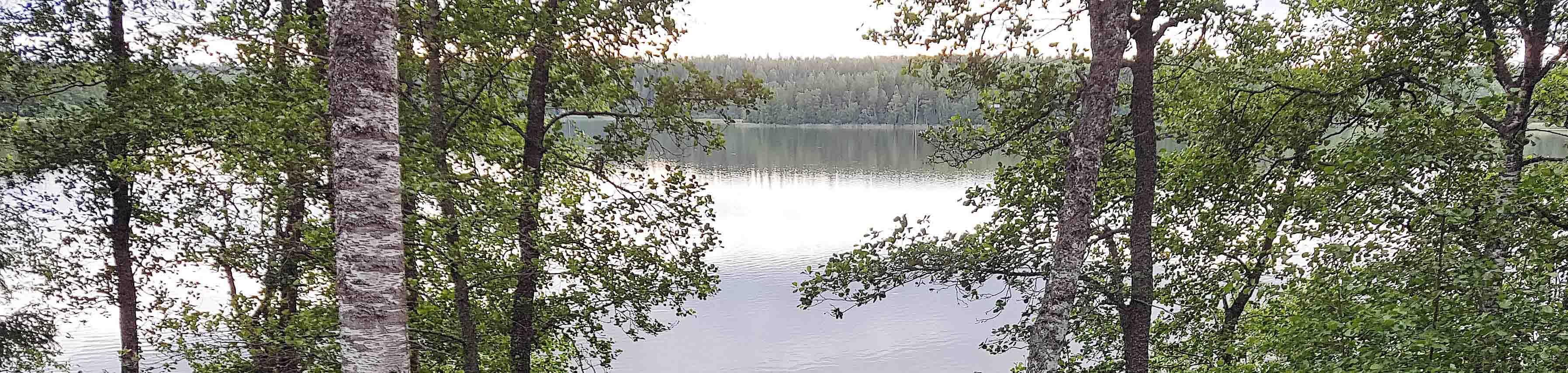 Hoitoa Töölössä ja Oulunkylässä